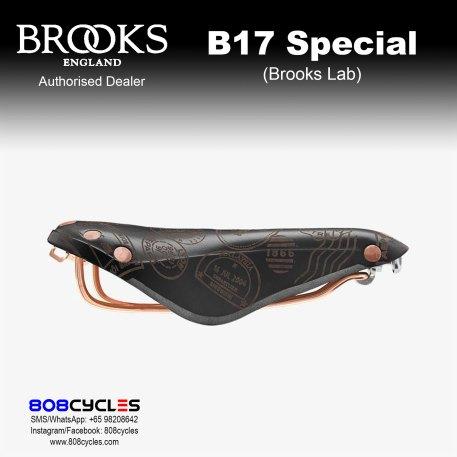 Brooks B17 Special (Brooks Lab)