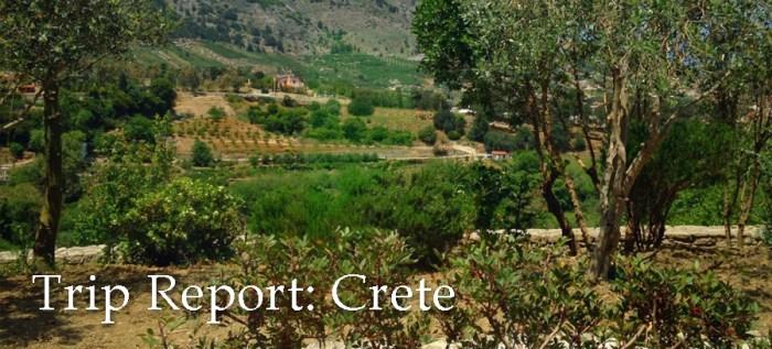 Crete trip report featured copy