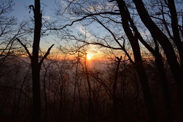 Die Sonne steigt über die Gipfel und taucht den Wald in Orange