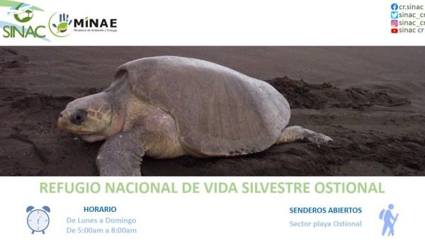 Autoridades ambientales autorizan apertura de otras 15 Áreas Silvestres Protegidas