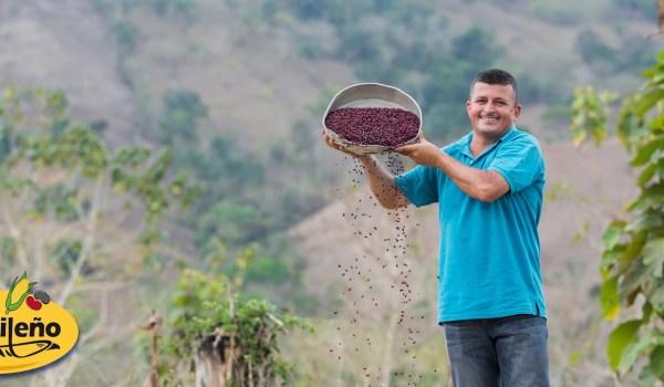 CNP adelanta ₡400 millones a productores de la Zona Sur por compra de frijol