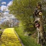 Abandoned Yellow Brick Road Escape