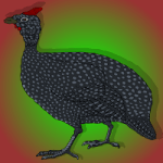 BEG Ransom The Liza From Alcazar