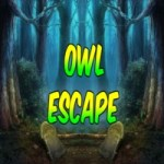 8b Owl Escape