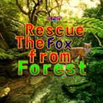 Knf Rescue The Fox From Forest Escape