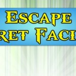 Escape Secret Facility