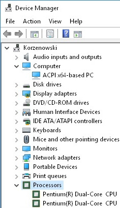 Processors listed in Device Manager