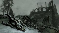 DragonBorn- (11)