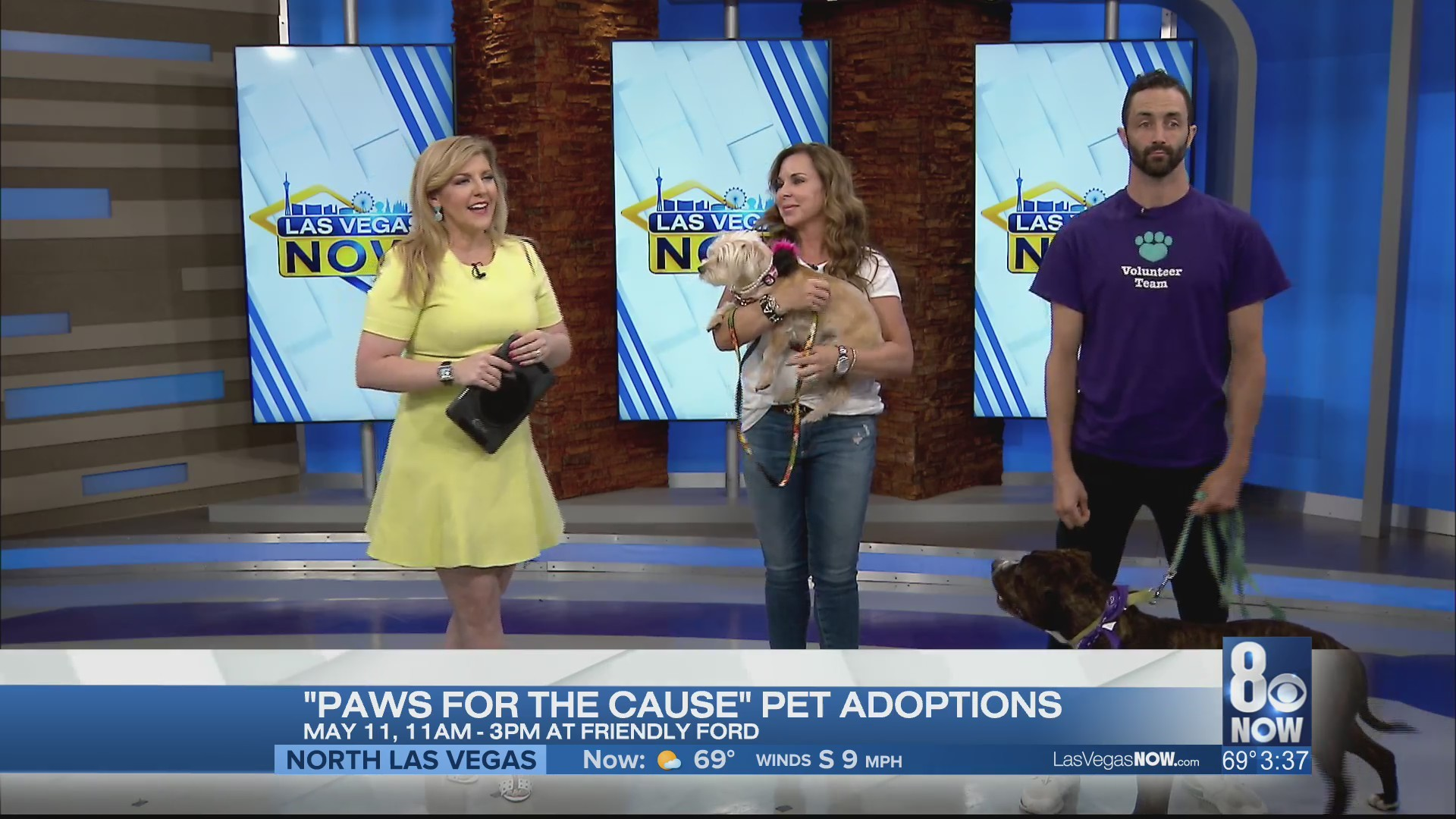 """""""Paws for a Cause"""" pet adoption is back"""