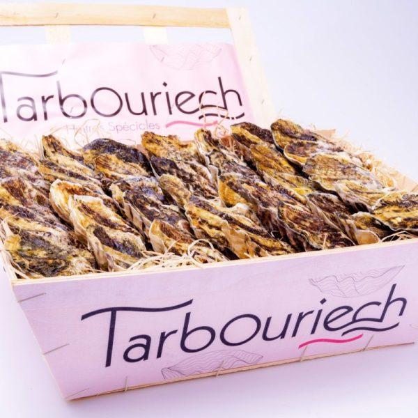 Ostriche-Tarbouriech-Italia-3