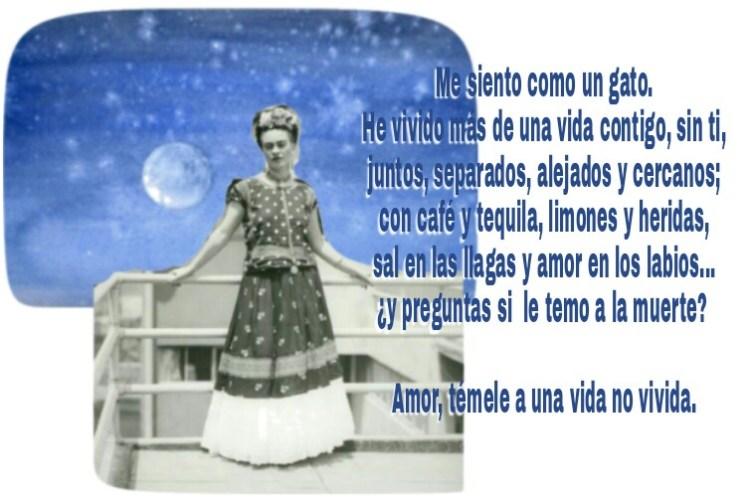 8-sorbos-de-inspiracion-cita-frida-kahlo-opinión-frases-célebres-citas-pensamientos-poemas-frase-me-siento-como-un-gato