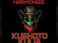 Harmonize kushoto Kulia