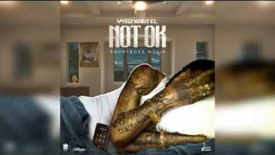 Photo of Vybz Kartel – Not OK