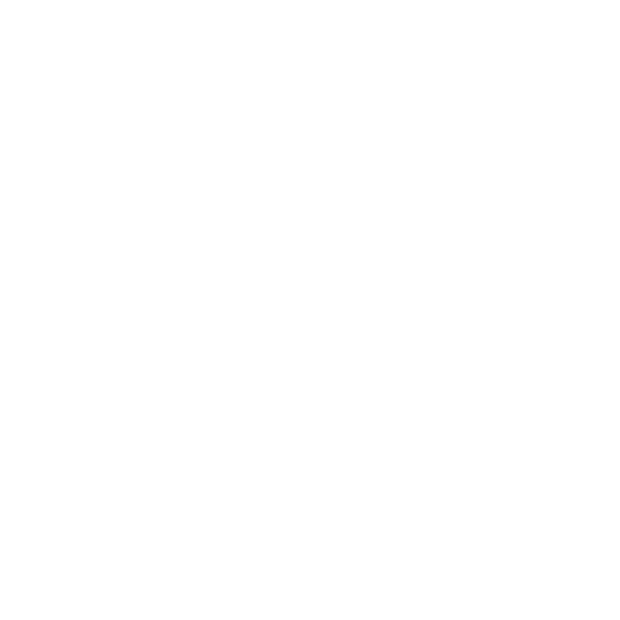 Celebrate the Light