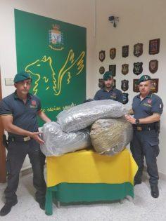 Sequestrati 50 chili di marijuana al casello di San Gregorio