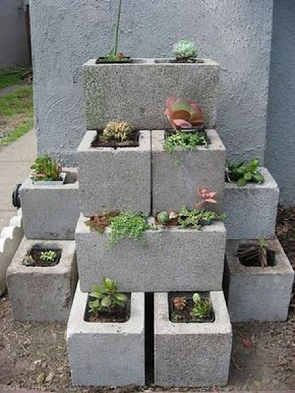 Awesome And Affordable Vertical Garden Ideas For Your Home 19