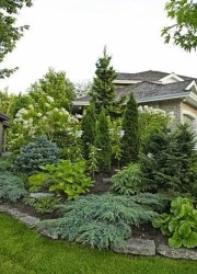 Gorgeous Front Yard Landscaping Remodel Ideas 25