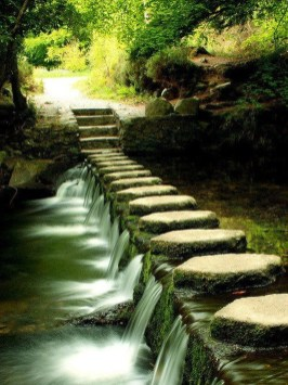 Stylish Stepping Stone Pathway Décor Ideas 15