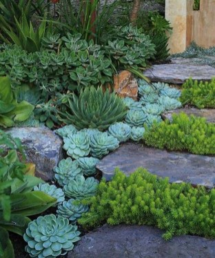 Stylish Stepping Stone Pathway Décor Ideas 25