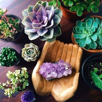 Astonishing Succulent Decoration Ideas For Living Room 08