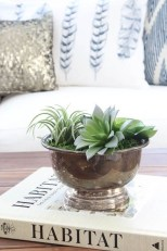 Astonishing Succulent Decoration Ideas For Living Room 28