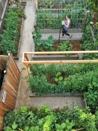 Unusual Vegetable Garden Ideas For Home Backyard 05
