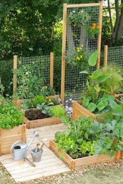 Unusual Vegetable Garden Ideas For Home Backyard 08