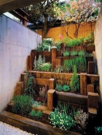 Unusual Vegetable Garden Ideas For Home Backyard 16