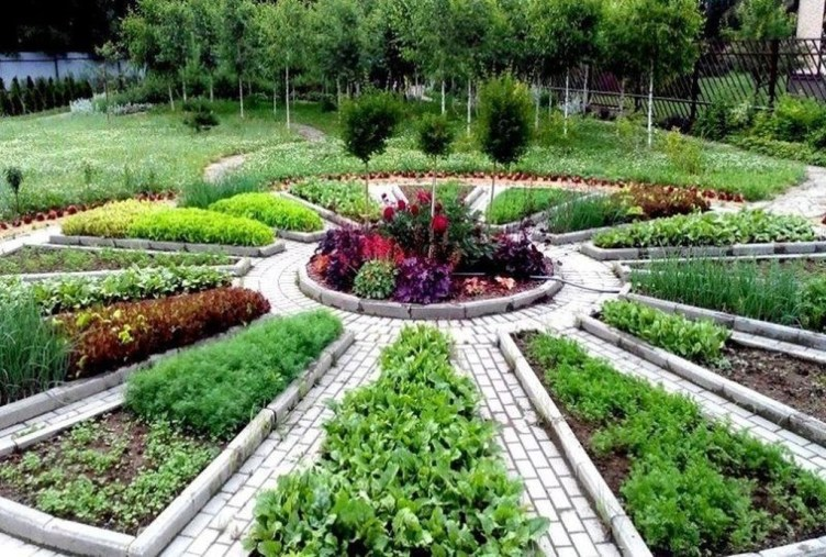 Unusual Vegetable Garden Ideas For Home Backyard 33