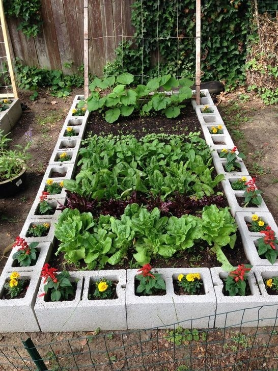 Unusual Vegetable Garden Ideas For Home Backyard 35