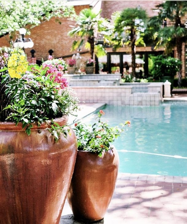 Creative Swimming Pools Design Ideas For Your Yard 12