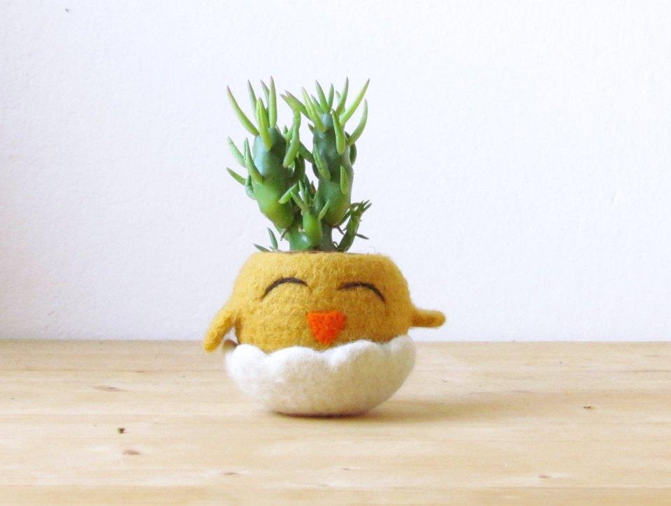 Eco friendly home decor ideas 2