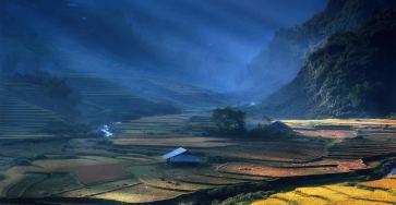 Beautiful Vietnam Rice Terrace Photos by Sarawut Intarob