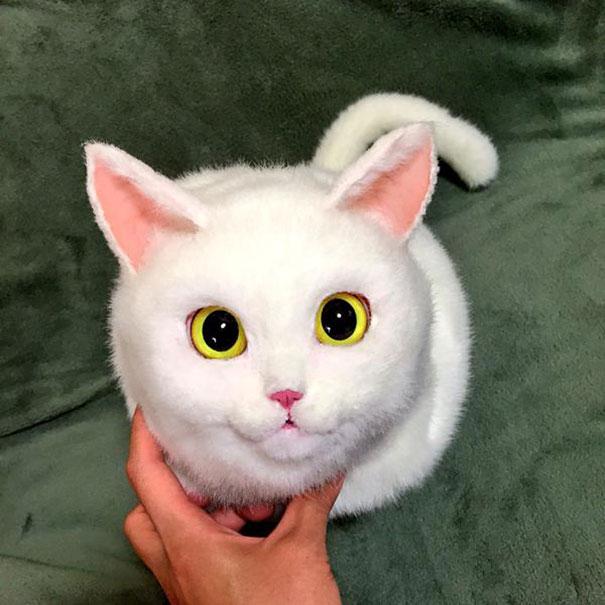 Creative Handmade realistic cat bags pico 02