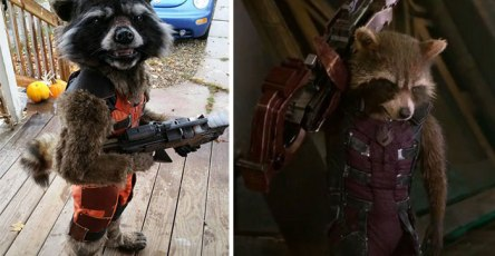 Mom's Costume Creation Goes Viral 'Guardians of the Galaxy'