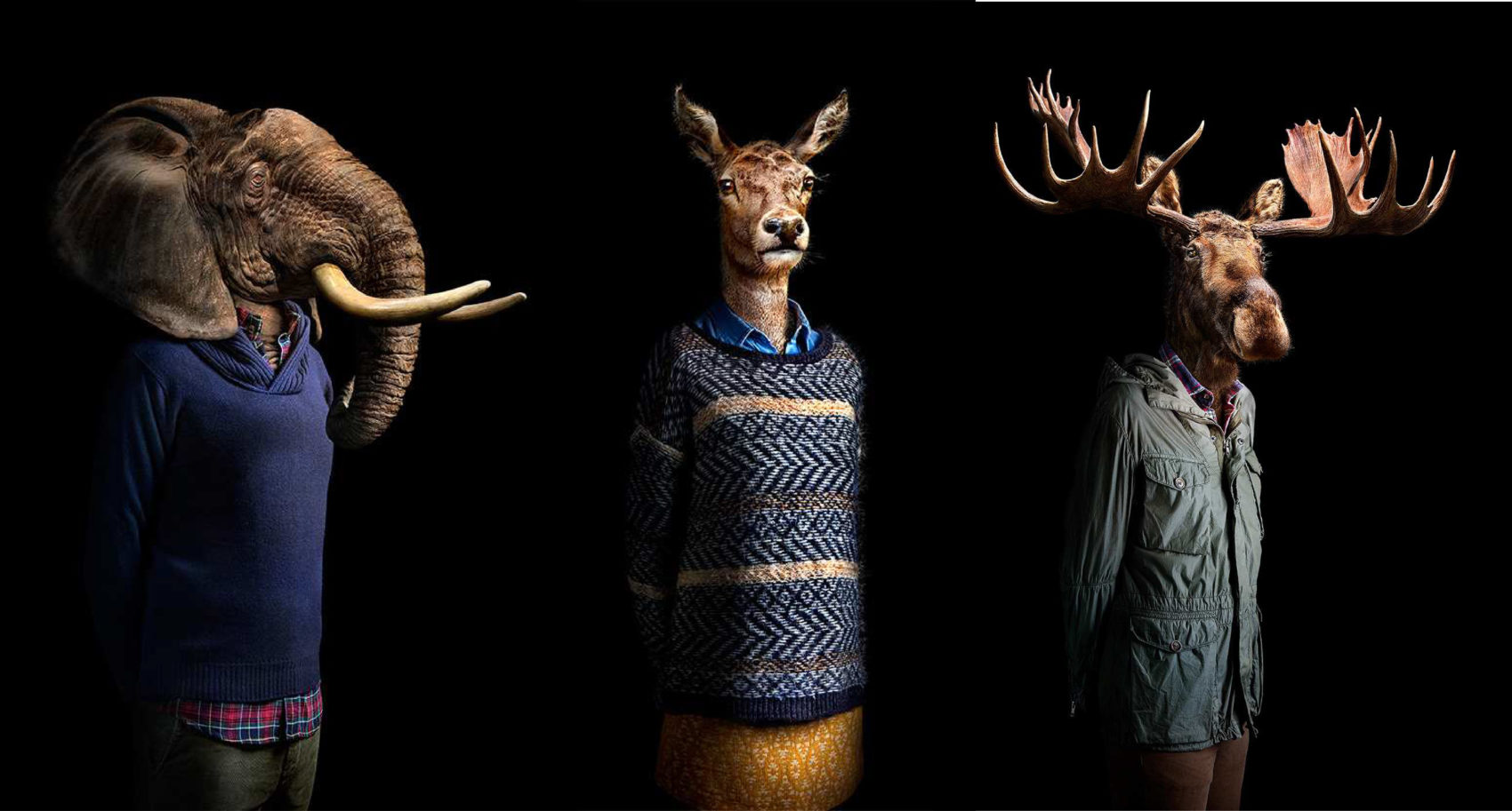 Animals Dressed in Contemporary Outfits by Miguel Vallinas