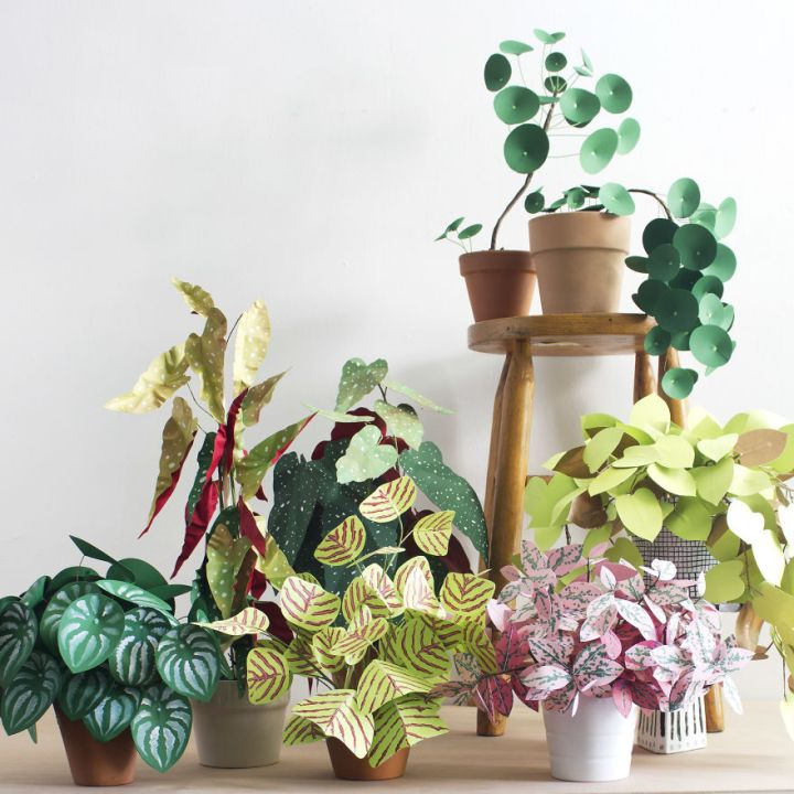 Creative Art, Create Green Room With Plants From Paper 77