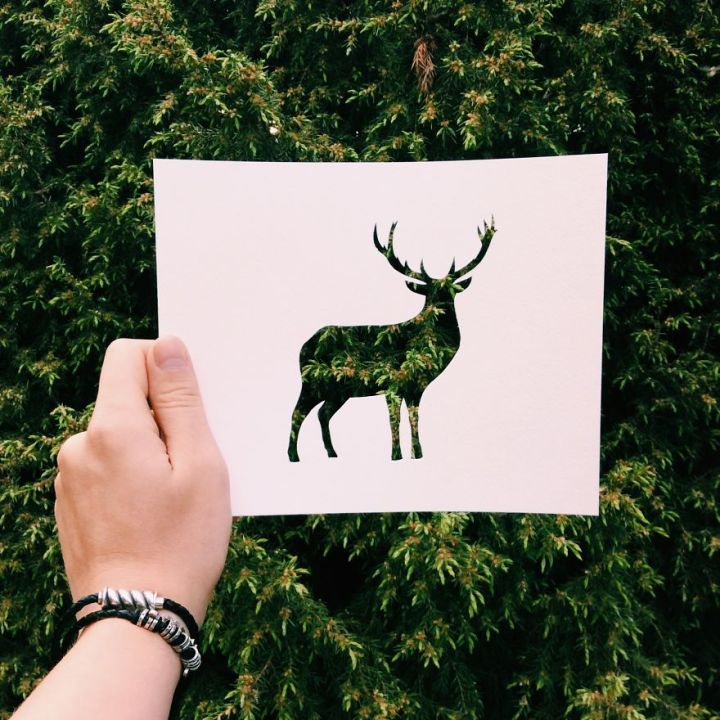 Nikolai Tolsty Use Nature To Color Animal Paper Silhouettes 99