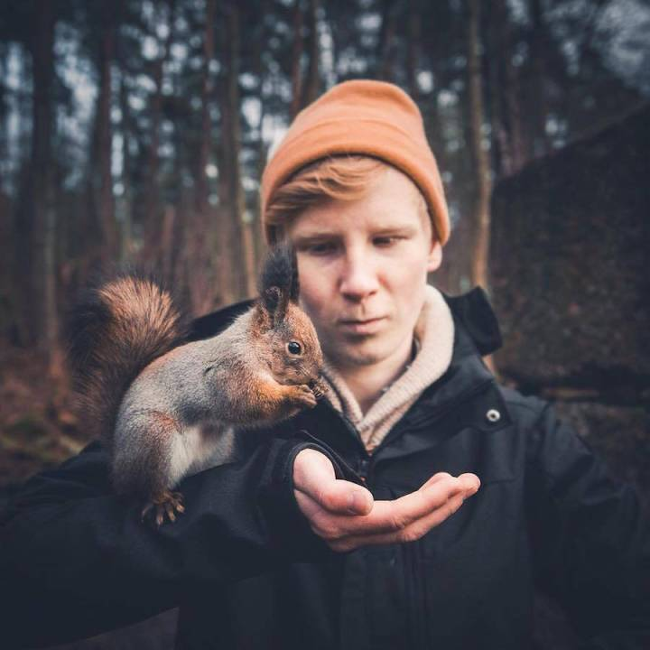 Stunning Photograph of the Wild Animals by Konsta Punkka