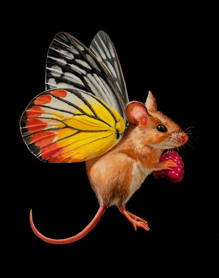 unique-paintings-tiny-mouse-with-butterfly-wings-by-lisa-ericson