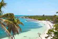 Photo of فلوريدا تطلق 750 مليون بعوضة معدلة وراثياً لمكافحة الأمراض