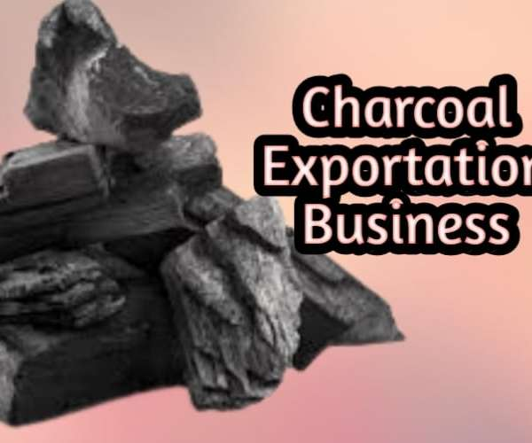 How To Start Charcoal Export Business In Nigeria 2021
