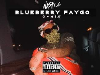 DOWNLOAD MP3: Nasty C - Blueberry Faygo C Mix