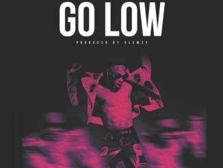 Download: Lax - Go Low