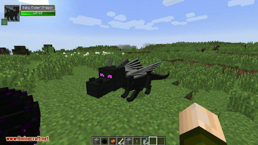 Minecraft Baby Dragon Skin