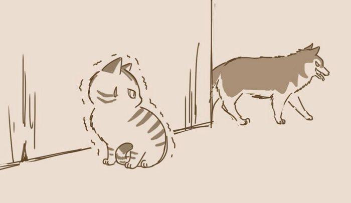 animal-friends-cat-dog-comics-lynal-9