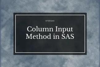 Column Input in SAS