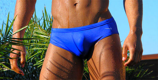 Penis Close Up in Speedo