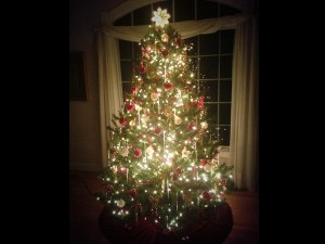 The idea of lights on a Christmas tree began as a symbol of twinkling stars in the night. The first lights were lit candles.