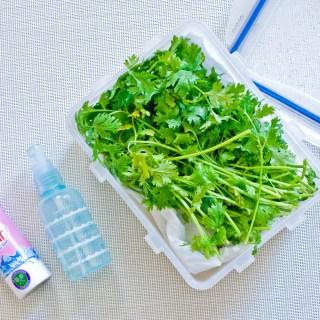 How to keep fresh herbs longer